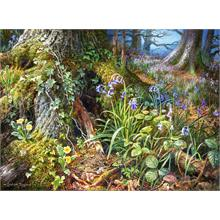 Castorland 2000 Parça From Rusland Woods Puzzle